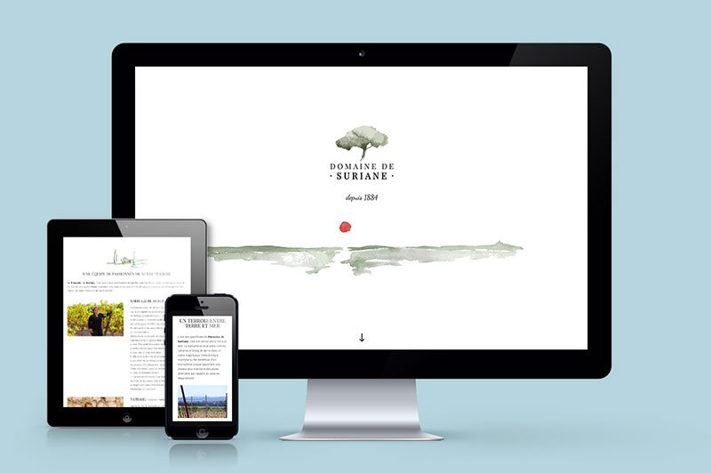 eshop-responsive-web-design-domaine-suriane-vignoble-traitsimple